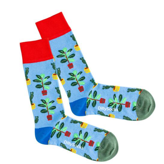 Water Plants Socke